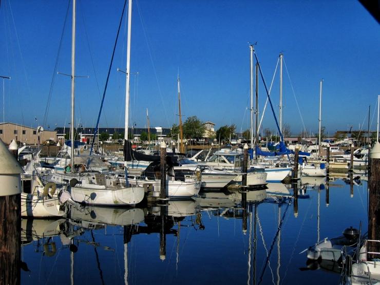Bellingham Marina 2