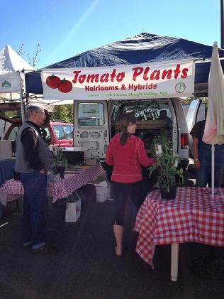 Edmonds Spring Market Plant Vendor 1