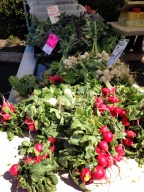 Edmonds Spring Market Vegetables 2