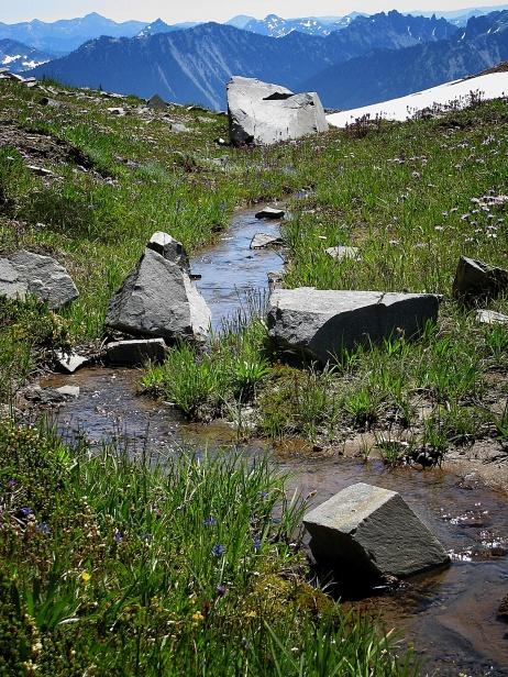 Stream from Mt. Rainier, WA.