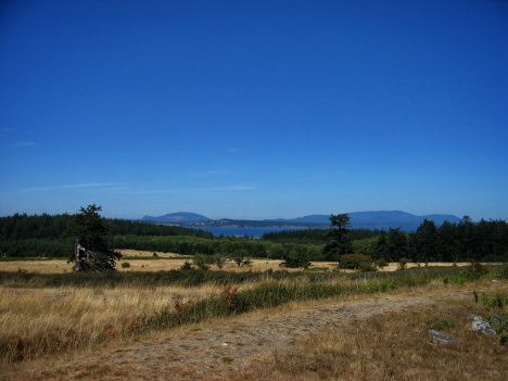 Path across American Camp on San Juan Island, WA.