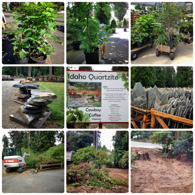 Garden Week 2 Collage