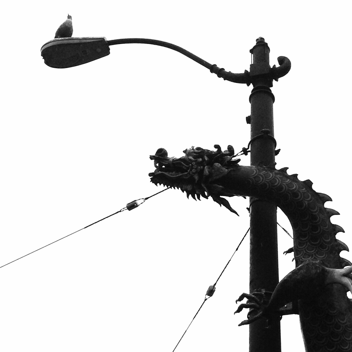 Weekly Photo Challenge:  Scale (Dragons in Chinatown)  B&W Challenge 4