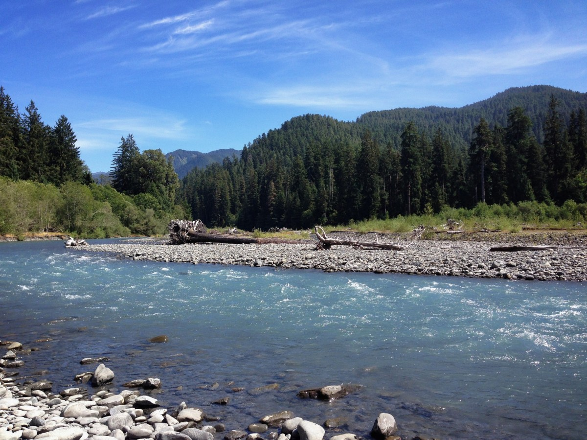 Weekly Photo Challenge:  Motion (Sounds of the Hoh River)