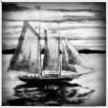 12-16 Tinto 1884, AO BW & Cubic Gel
