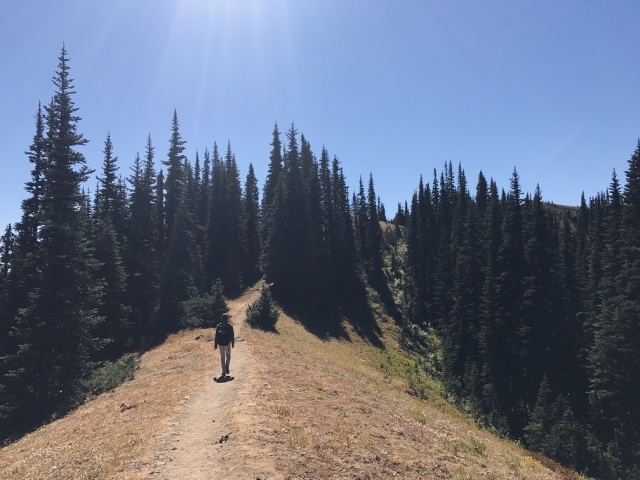Hiking the Klahhane Ridge Trail in Olympic National Park