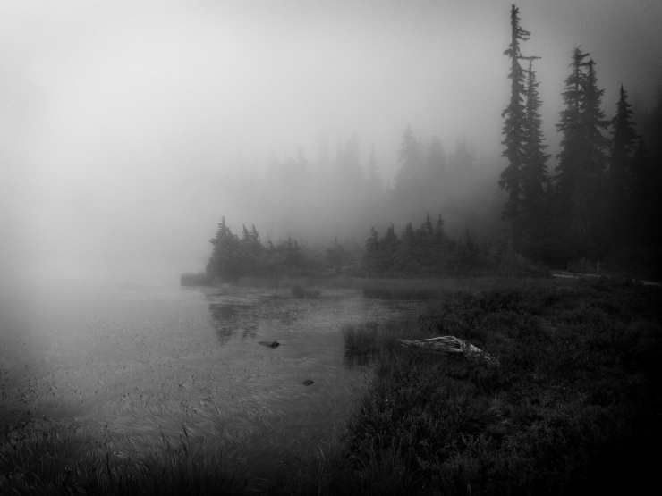 Pacific Northwest Mountain Lake in Fog