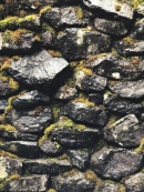 Moss on a rock wall